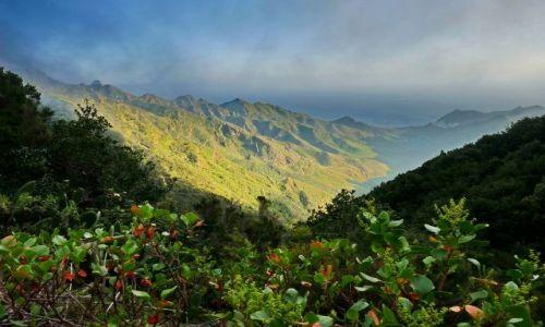 Zdjecie HISZPANIA / Teneryfa / Anaga / W górach Anaga