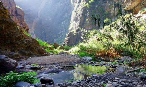 Zdjecie HISZPANIA / Teneryfa / Masca / W kanionie na szlaku Masca