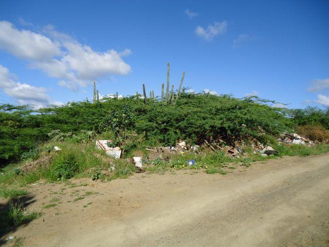 Zdjęcia: Willemstad, Antyle Holenderskie / Curacao, Trochę śmiecą, HOLANDIA