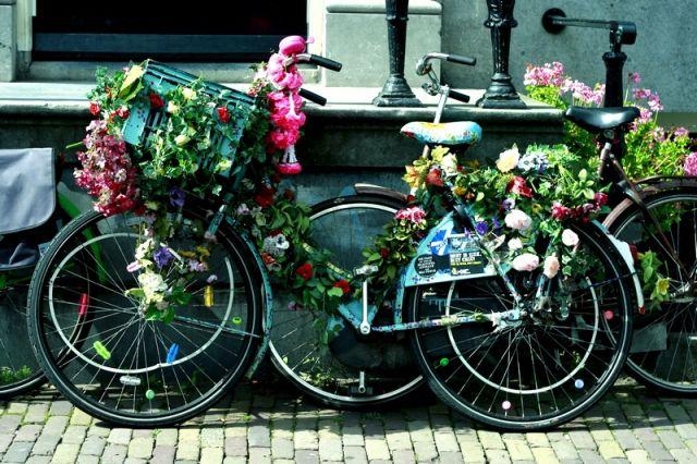 Zdjęcia: Amsterdam, I love bikes, HOLANDIA