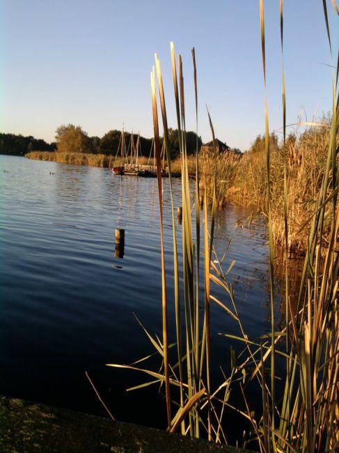 Zdjęcia: Bleiswijk, Zamyślenie, HOLANDIA