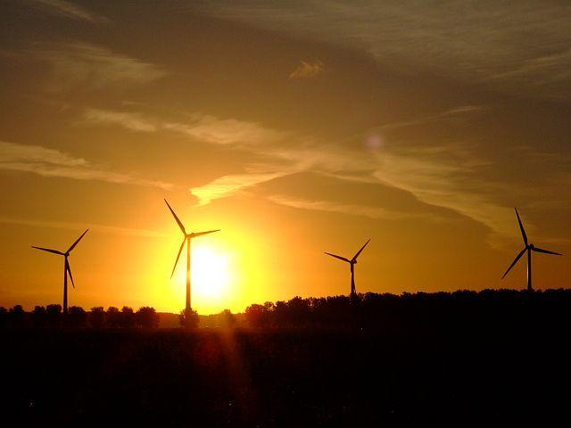 Zdjęcia: Zeewolde, Flevoland, wiatraki na tle wschodzącego słońca , HOLANDIA