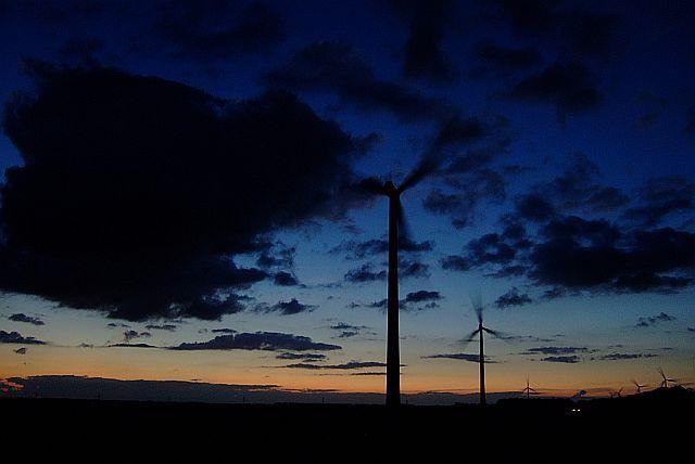 Zdjęcia: zeewolde, Flevoland, wieczór nad  Flevolandem, HOLANDIA
