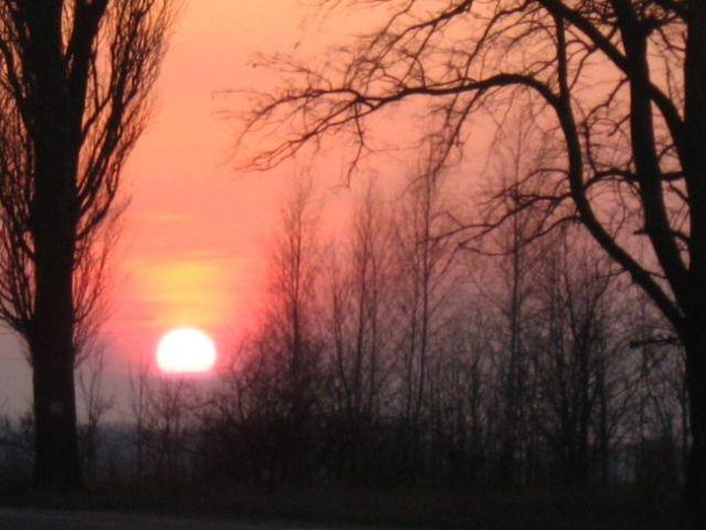 Zdjęcia: oss, the sunset 2, HOLANDIA
