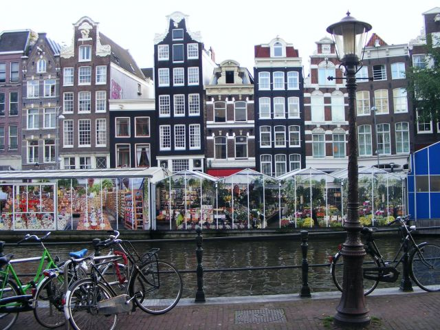 Zdjęcia: Amsterdam, Amsterdam, Flower Market, HOLANDIA
