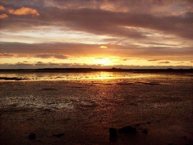 Zdjęcia: Schiermonnikoog, Wyspa, Pięknie, HOLANDIA