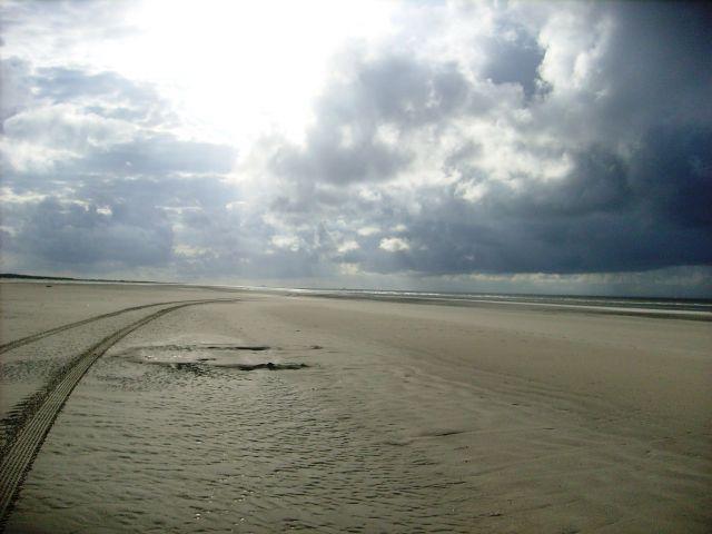 Zdjęcia: Schiiermonnikoog, Krajobraz, HOLANDIA