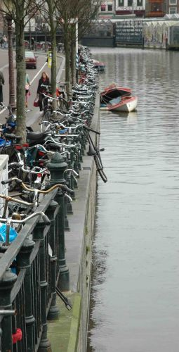 Zdjęcia: amsterdam, ten nie uważał na znaki, HOLANDIA