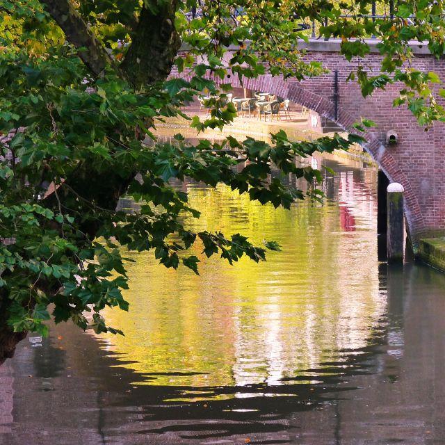 Zdjęcia: utrecht, utrecht, Opadające drzewo i mostek, HOLANDIA