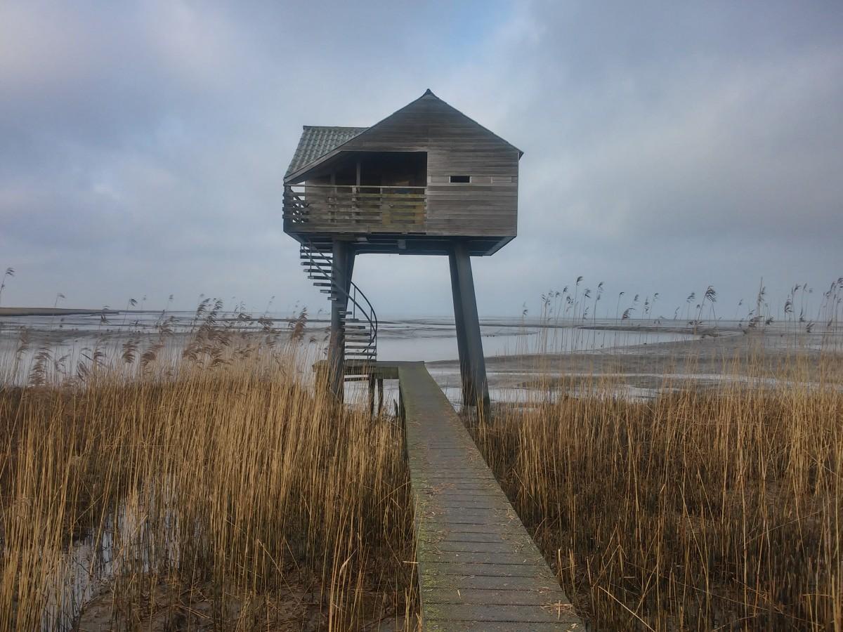 Zdjęcia: kiekkaaste , zatoka morska, domek dla ornitologów , HOLANDIA