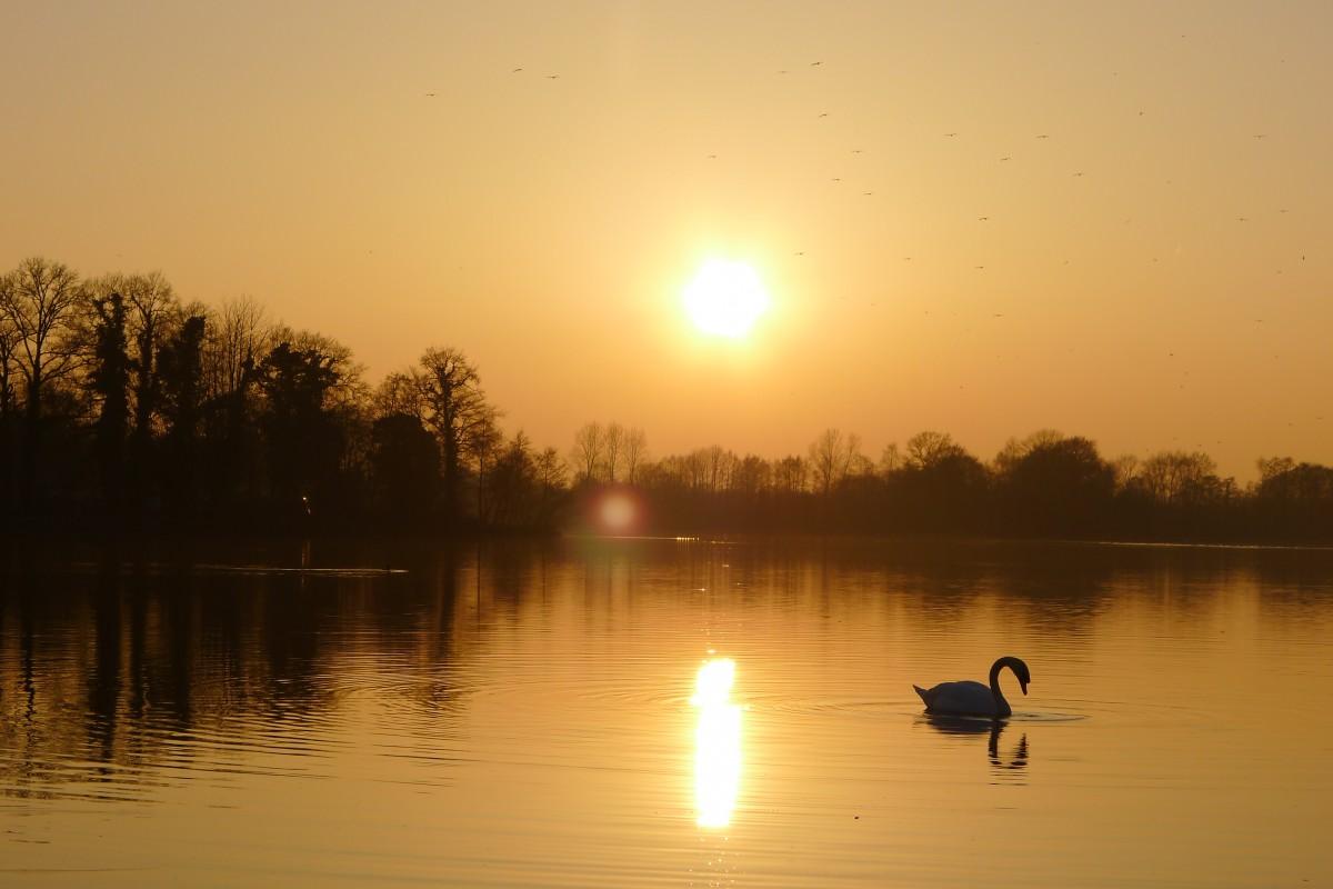 Zdjęcia: Jezioro Hilgelo w miejscowości Winterswijk , Achterhoek/ Wschodnia  Holandia, Romantycznie nad Hilgelo , HOLANDIA