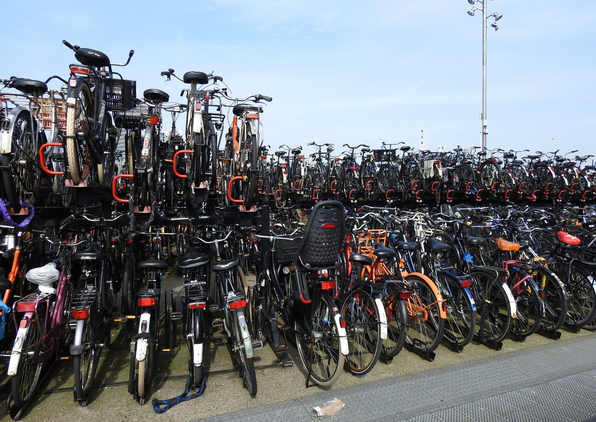 Zdjęcia: Amsterdam, Amsterdam, Rowery, HOLANDIA