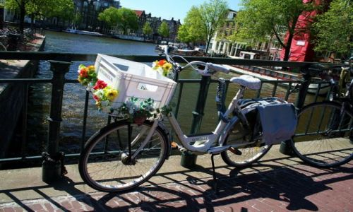 HOLANDIA / Amsterdam / Amsterdam / Biały rower
