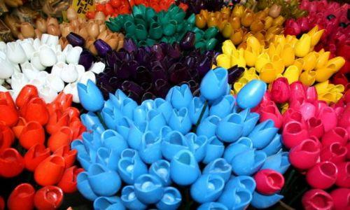 HOLANDIA / - / Amsterdam / Drewniane tulipany wiecznie kolorowe ;)