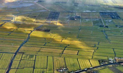 HOLANDIA / zuid holland / Polder / Holenderski krajobraz z balona
