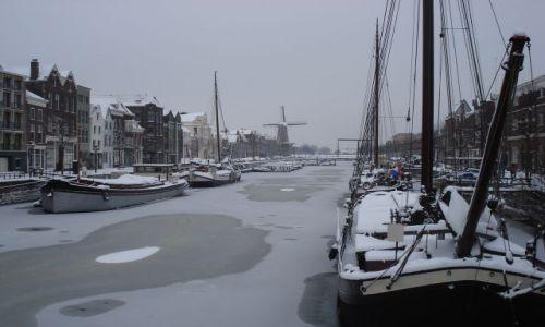 Zdjecie HOLANDIA / Zuid Holland / Rotterdam / Rotterdam zima