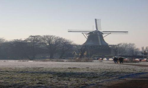 Zdjecie HOLANDIA / Zuid Holland / Rotterdam / Impresje holenderskie 1