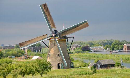 HOLANDIA / zuid holland / Kinderdijk / Jeden pośród wielu w Kinderdijku