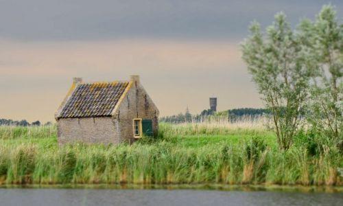 HOLANDIA / zuid holland / Kinderdijk / Domek wśród traw