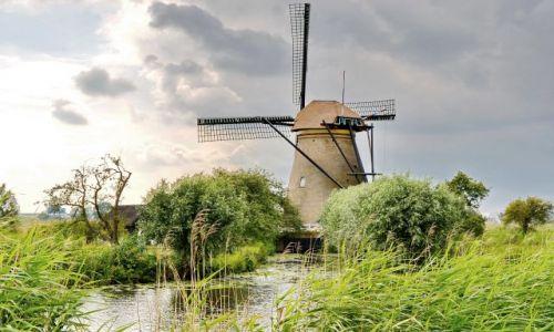 HOLANDIA / zuid holland / Kinderdijk / Samotny wiatrak