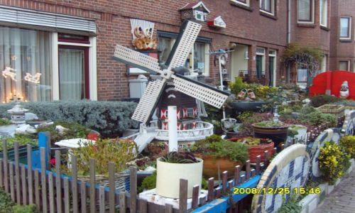 Zdjecie HOLANDIA / Holandia północna / Amsterdam / amsterdamskie ogródeczki