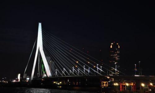 Zdjecie HOLANDIA / Zuid Holland / Rotterdam / Erasmusbrug