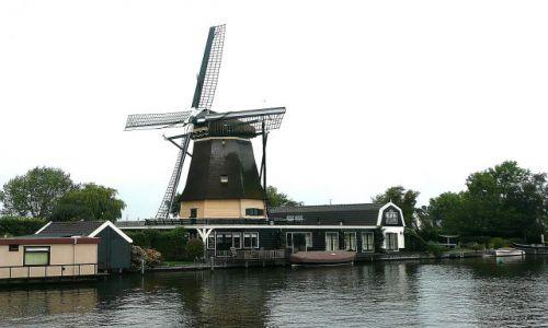 HOLANDIA / prowincja Utrecht / przy kanale Utrecht - Amsterdam / Holenderskie wiatraki 1