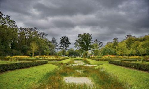 Zdjęcie HOLANDIA / Drenthe / Leek / Park w Nienord