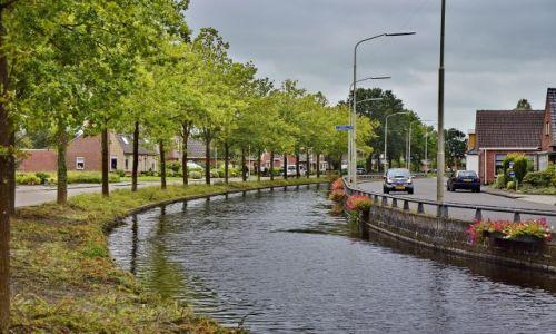 Zdjęcie HOLANDIA / Drenthe / Leek / Drzewostan nad kanałem