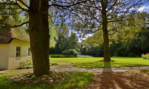 Zdjęcie HOLANDIA / Drenthe / Leek / Początki jesieni