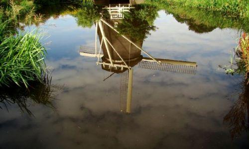 Zdjecie HOLANDIA / - / Kinderdijk / Odbicie w wodzie