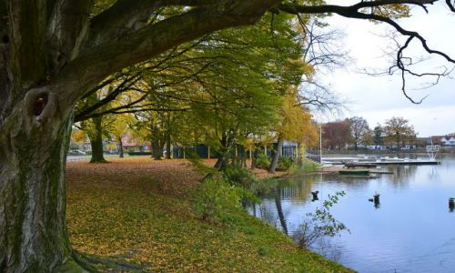 HOLANDIA / Overijssel / Hengelo / Spokojny staw