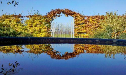 HOLANDIA / Gelderland / Appeltern / Pergola 1