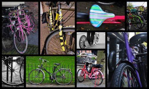 HOLANDIA / - / Amsterdam / Po co chodzić skoro można jeździć?