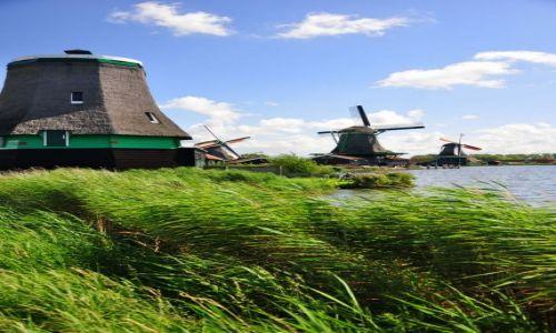 HOLANDIA / pod Amsterdamem / Zaans / Miele i miele ...