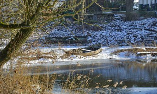 Zdjęcie HOLANDIA / Gelderland / Millingerwaard / Łódki na śniegu