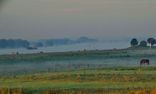 Zdjęcie HOLANDIA / Geldria / Ochten / Krajobraz nad rzeką Waal