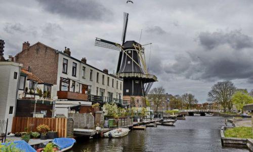 Zdjecie HOLANDIA / Noord Holland / Haarlem / Kanał w Haarlemie