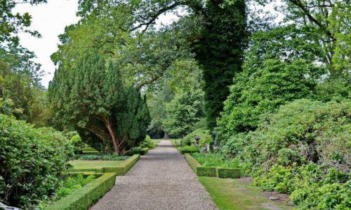 Zdjęcie HOLANDIA / Overijssel / Delden / Ogród w Twickel