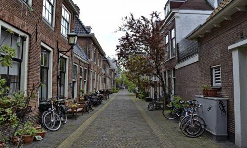 Zdjęcie HOLANDIA / Noord Holland / Haarlem / Uliczka w Harlemie