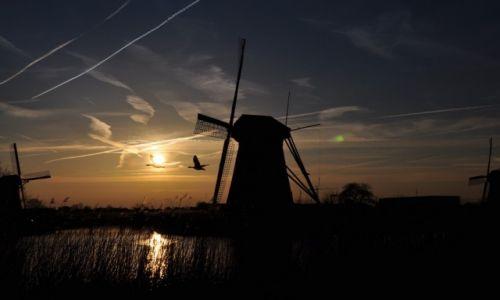 HOLANDIA / Holandia / Kinderdijk / zachód słońca