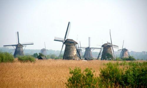 Zdjecie HOLANDIA / Kinderdijk / Kinderdijk / Wiatraki Kinderdijk