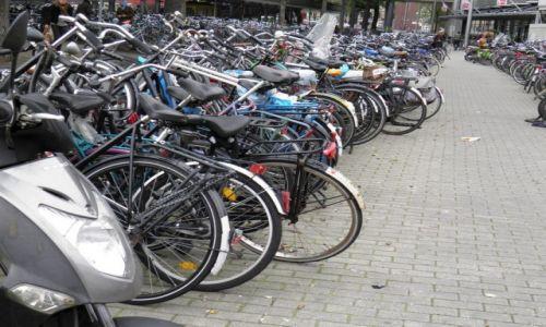 HOLANDIA / - / Amsterdam / Amsterdam-2