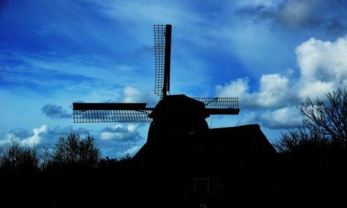 Zdjecie HOLANDIA / Północna Holandia / Callantsoog / Wiatrak