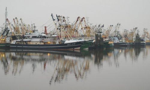 Zdjęcie HOLANDIA / Friesland / Harlingen / spokój