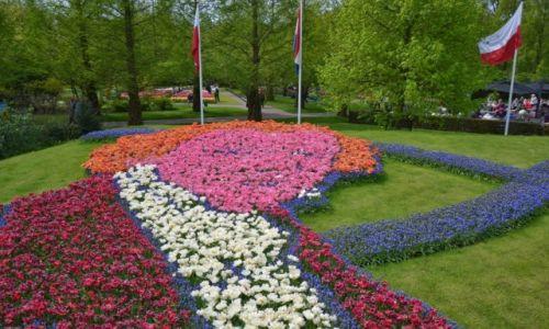 HOLANDIA / Holandia Południowa / Keukenhof / Ogród Keukenhof
