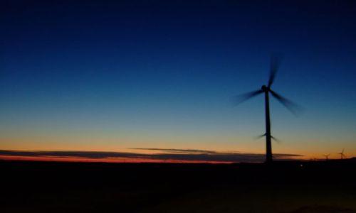 Zdjęcie HOLANDIA / Flevoland / Zeewolde / zachód słońca