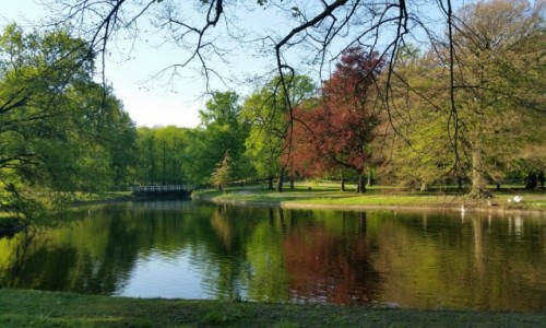 HOLANDIA / Haga / Park Clingendael / Park Clingendael