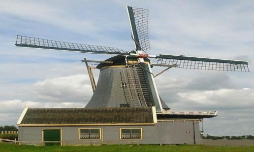 Zdjęcie HOLANDIA / Holandia / Leeuwarden / Wiatrak