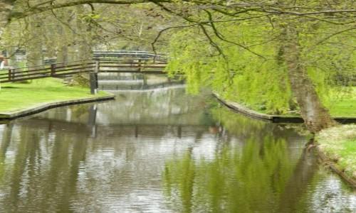 Zdjęcie HOLANDIA / gierthoorn / .. / wiosna w Giethoorn